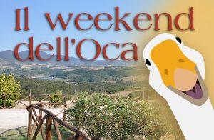 Il week end dell'Oca
